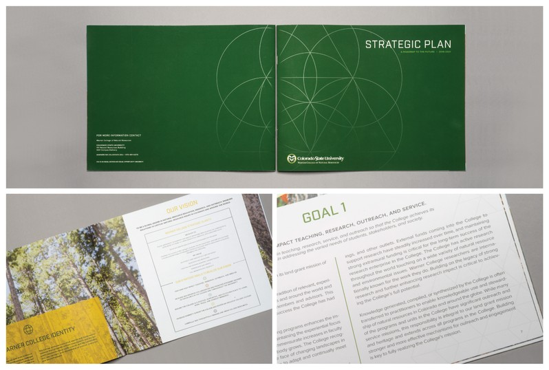 Examples of CSU Green featured prominently in visual communications