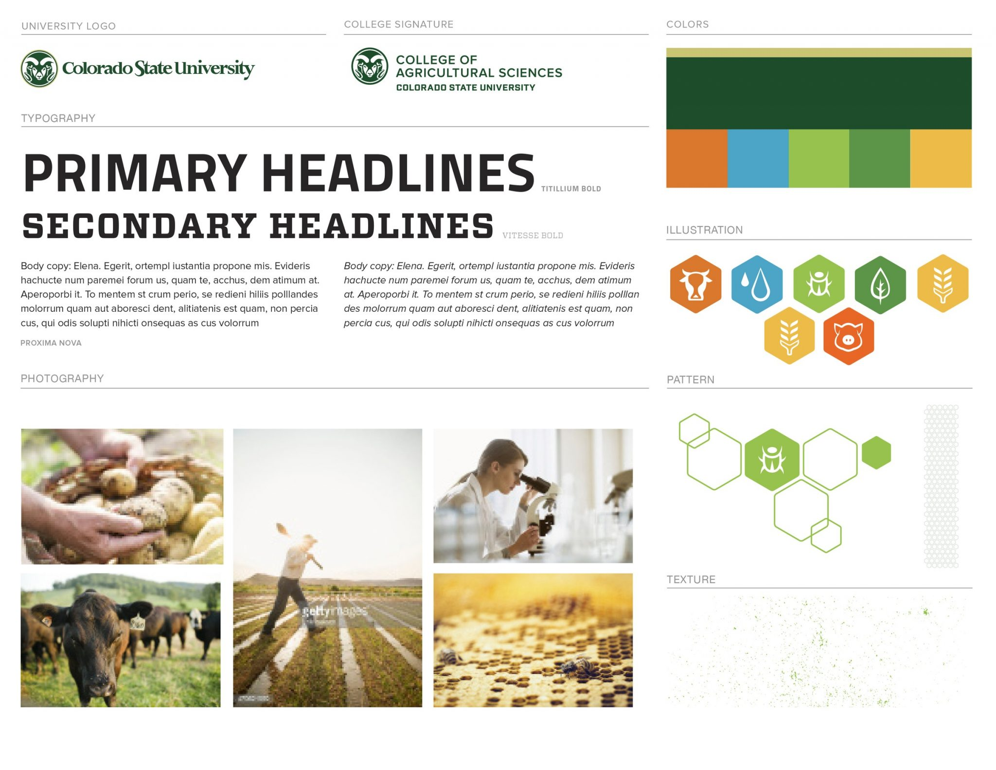 College of Ag Visual Brand Elements