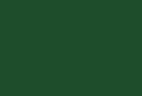 swatch of CSU green